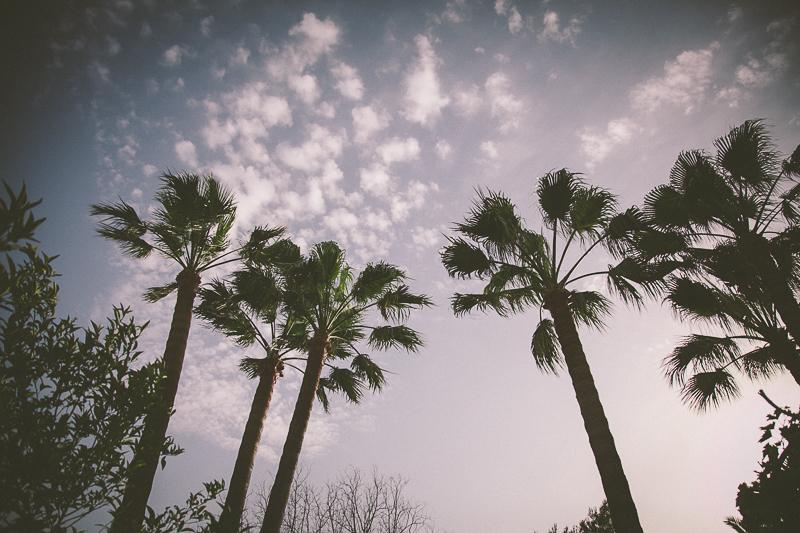 joanfrank_fotografo_de_bodas_palma_de_mallorca_Gabriel _y_Barbara--15
